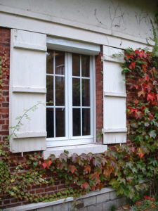 Fenêtre et lierre Oise